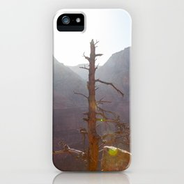 Tree High (Zion National Park, Utah) iPhone Case