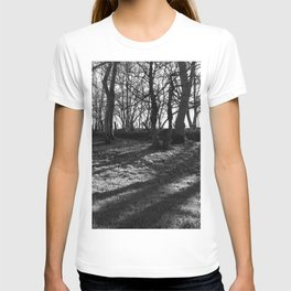 Railway Trees T-shirt