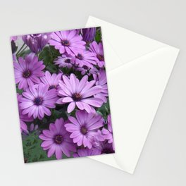 Lilac & Sage Color Purple Daisy Flowers Garden Stationery Cards