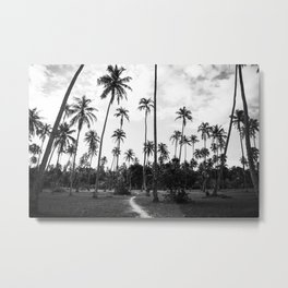 Black and white palmtrees - French Polynesia travel photography Metal Print
