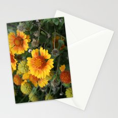 A Full Cycle Stationery Cards