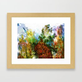 Colorful Birches Framed Art Print