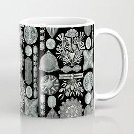Ernst Haeckel - Scientific Illustration - Diatomea Coffee Mug