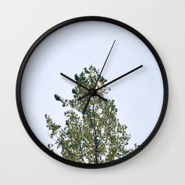 Aspen & Sky Wall Clock