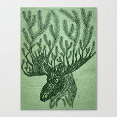 Moose-fir Canvas Print