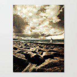 Between Elements Canvas Print