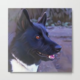 Karelian Bear Dog Metal Print