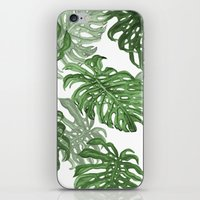 palms iPhone & iPod Skins featuring Monstera Deliciosa by Laura O'Connor