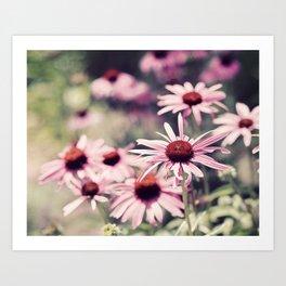 Sweet Daisies Art Print