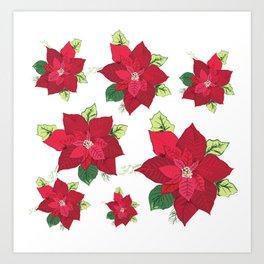 Christmas Poinsettia Art Print