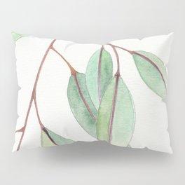 Eucalyptus Leaves One Pillow Sham