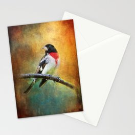 Rose-breasted Grosbeak ~ Ginkelmier Inspired Stationery Cards