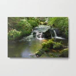 Fairys In Dingley Dell Metal Print