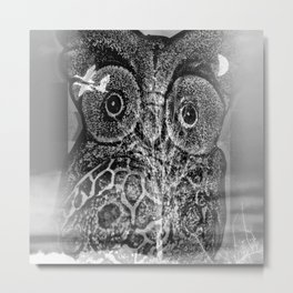 Owl time Metal Print