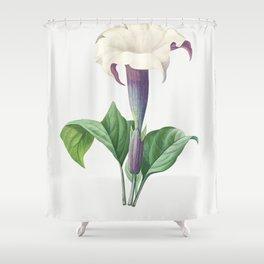 Antique plant drawn by Pierre-Joseph Redoute (1759-1840 ) Shower Curtain