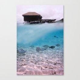 Tropical Maldives Snorkeling Fun Coral Fish In Turquoise Sea Canvas Print
