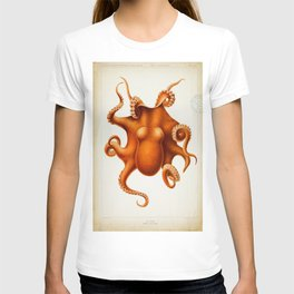 Octopus Cephalopod 1915 T-shirt