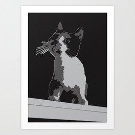 A Curiosity Amongst Cats Art Print