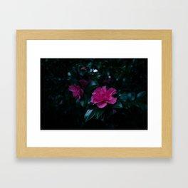 Dark flowers I Framed Art Print