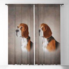 Drawing Dog Beagle 12 Blackout Curtain