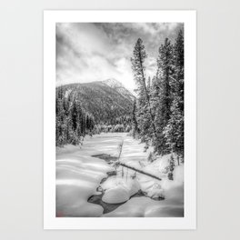 Winter Walk B&W Art Print