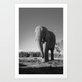 Sally the Elephant Art Print