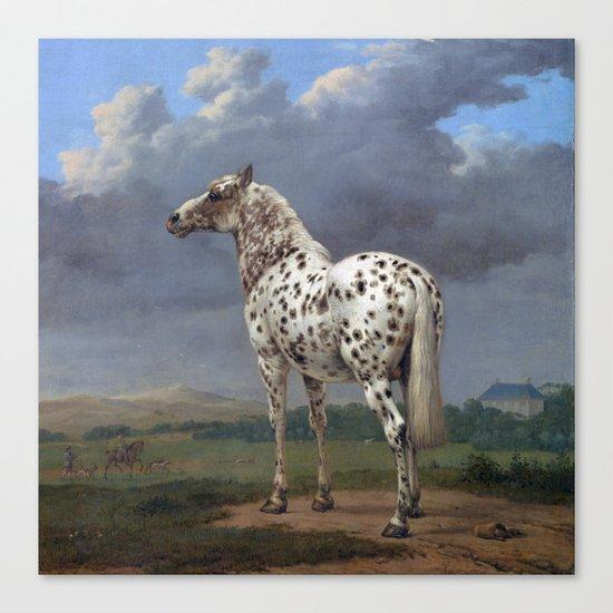 The horse blanc noir  Canvas Print