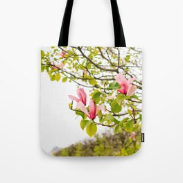 Jardin du Palais Royal IV Tote Bag