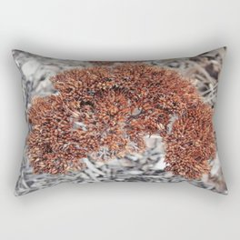 Clarified Rectangular Pillow