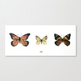 Garden Butterflies Canvas Print