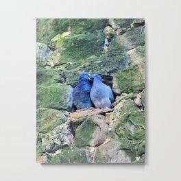 Italian Love Doves Metal Print