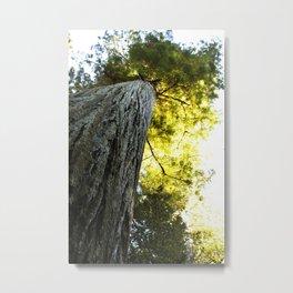 One Big Tree Metal Print