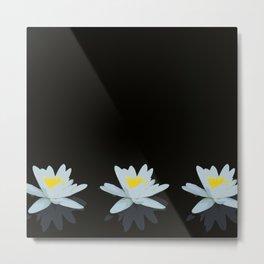 Waterlily Flowers On Black Background #decor #society6 #buyart Metal Print