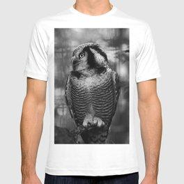 Owl series no.1 T-shirt