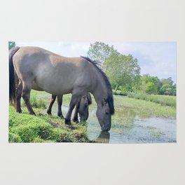Drinking horses Rug