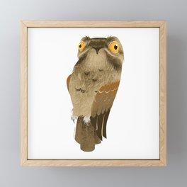 Potoo Framed Mini Art Print