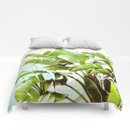 Banana Palms Comforters