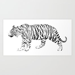 Tiger - black and white vector Art Print