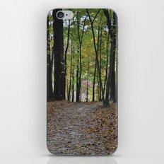 Fall Pathway iPhone & iPod Skin