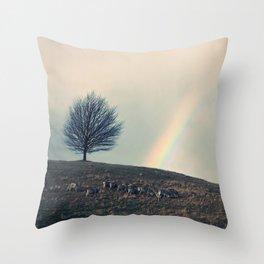 Chasing rainbows and counting sheep. Same thing really. Throw Pillow