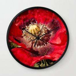 Red Papaver Somniferum Poppy Wall Clock