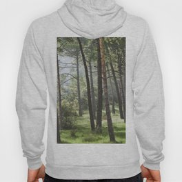 Spring forest. Foggy sunrise Hoody