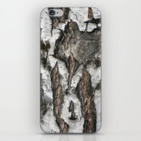 birch iPhone & iPod Skins featuring Birch by Sproot