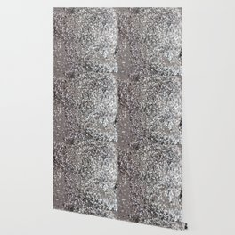 Sparkling SILVER Lady Glitter #1 #decor #art #society6 Wallpaper