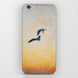 gulls iPhone Skin