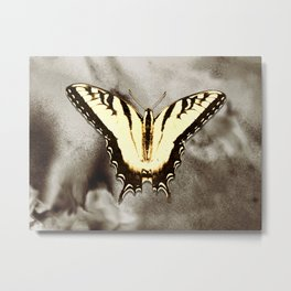 Yellow Butterfly Modern Cottage Chic Modern Country Art A498 Metal Print