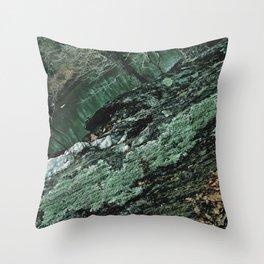 Forest Textures Throw Pillow