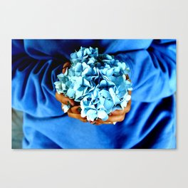 Things of Blue  Canvas Print