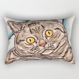 Grey Cat Rectangular Pillow
