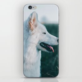 White Wolf Tongue Out (Color) iPhone Skin
